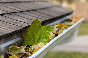 house gutter with leaves inside